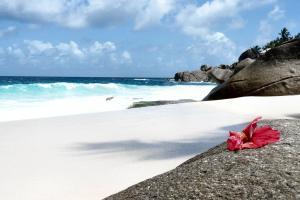Seychelles, Ibisco al sole